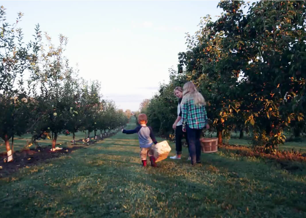 Evans Orchard 5 things this summer