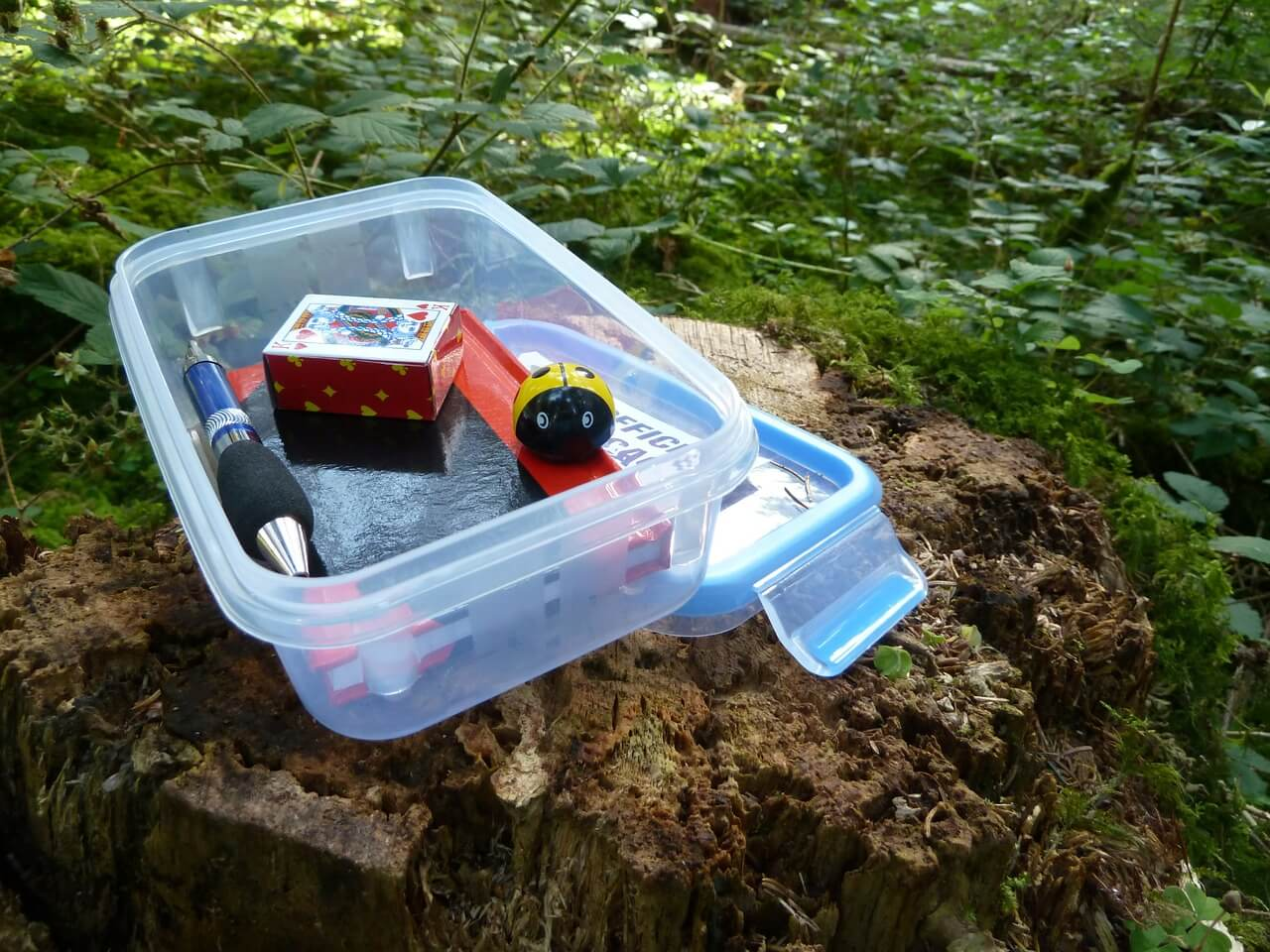 geocaching 5 things this summer