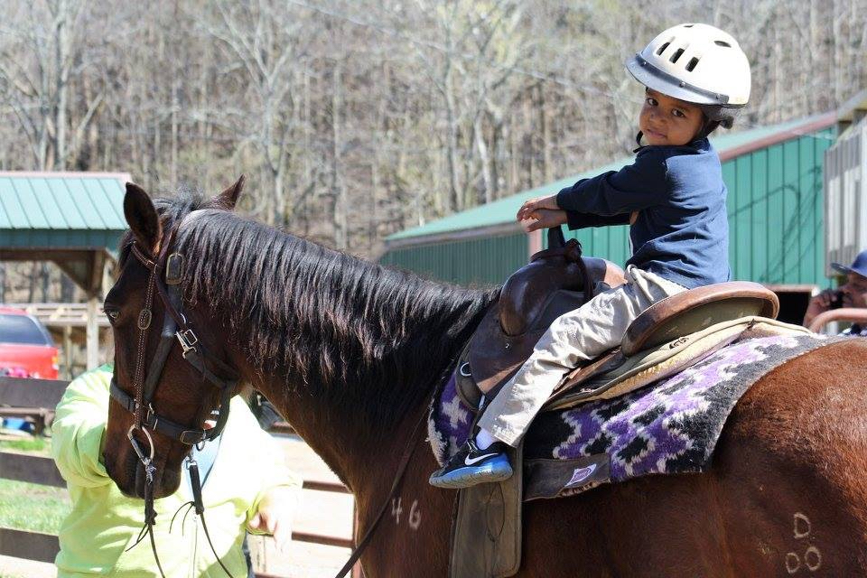 whispering woods horse activity